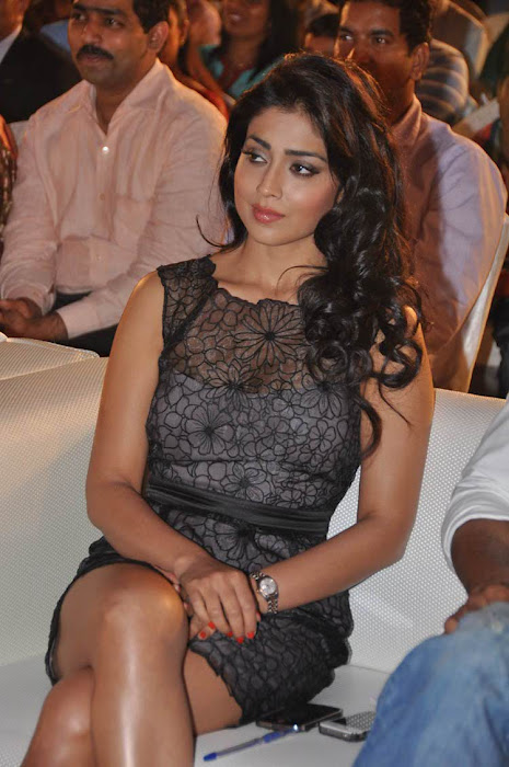 Shriya Saran - South Beauty New Hot Photos
