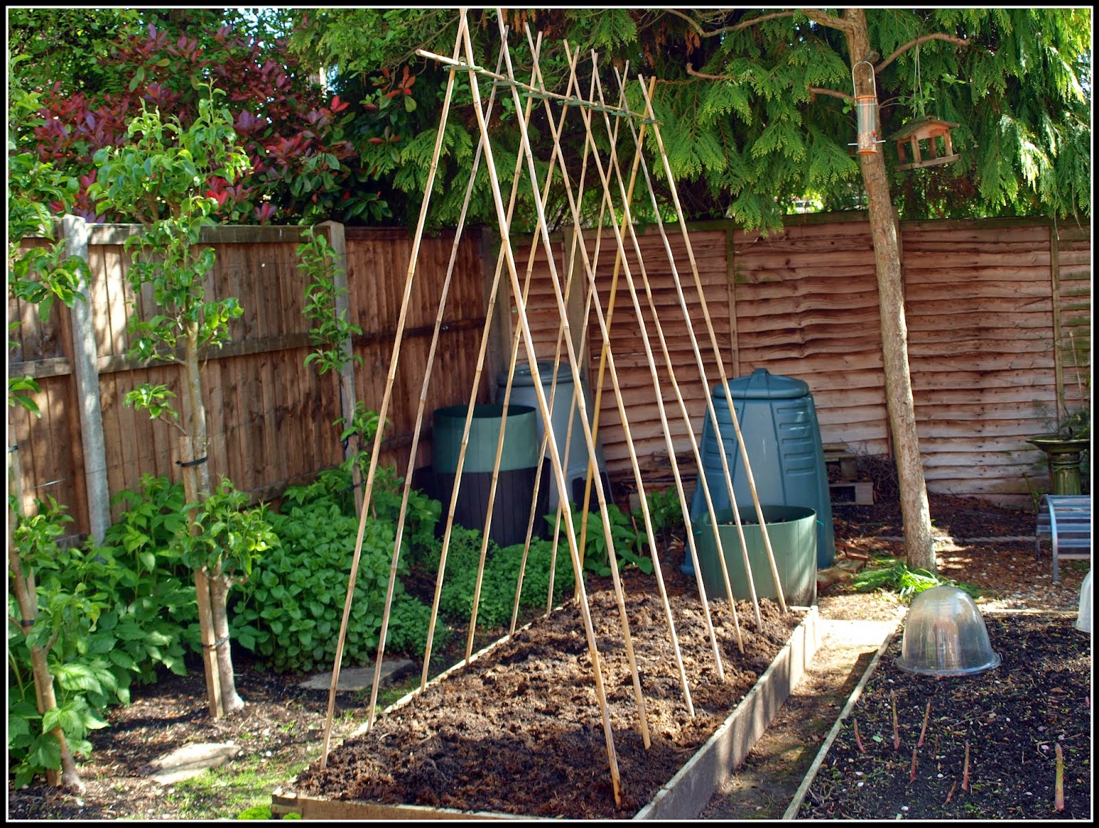 how to make pole bean supports