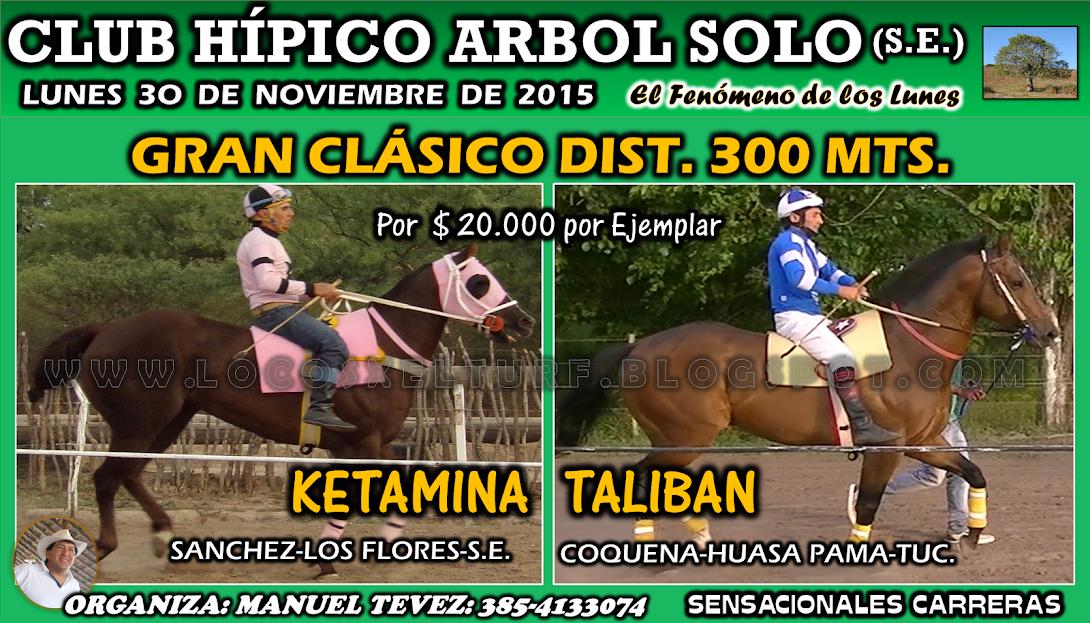 30-11-15-HIP. ARBOL SOLO-CLAS.