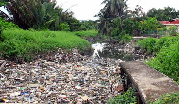 pollution of water sources in malaysia essay