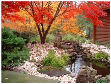 Garden Design With Japanese Garden Art Dry Garden, Moss Garden And Garden  Ponds With Planting