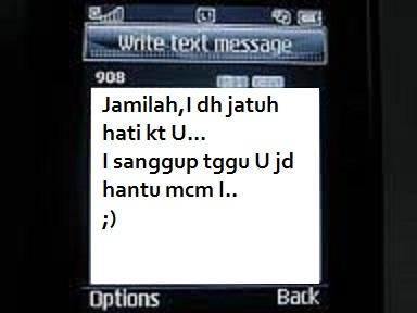 Aku membaca mesej yang dihantar oleh unknown number itu.
