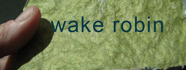 <a href="http://www.velmabolyard.com">Wake Robin</a>