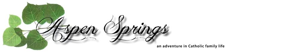 Aspen Springs