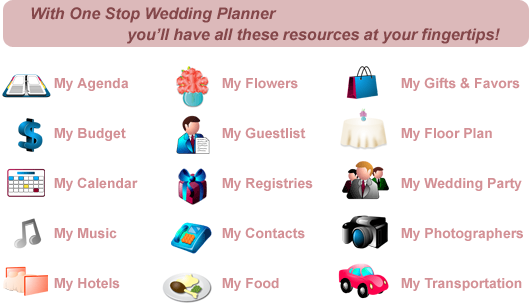 wedding planners to hire or not bashful brides