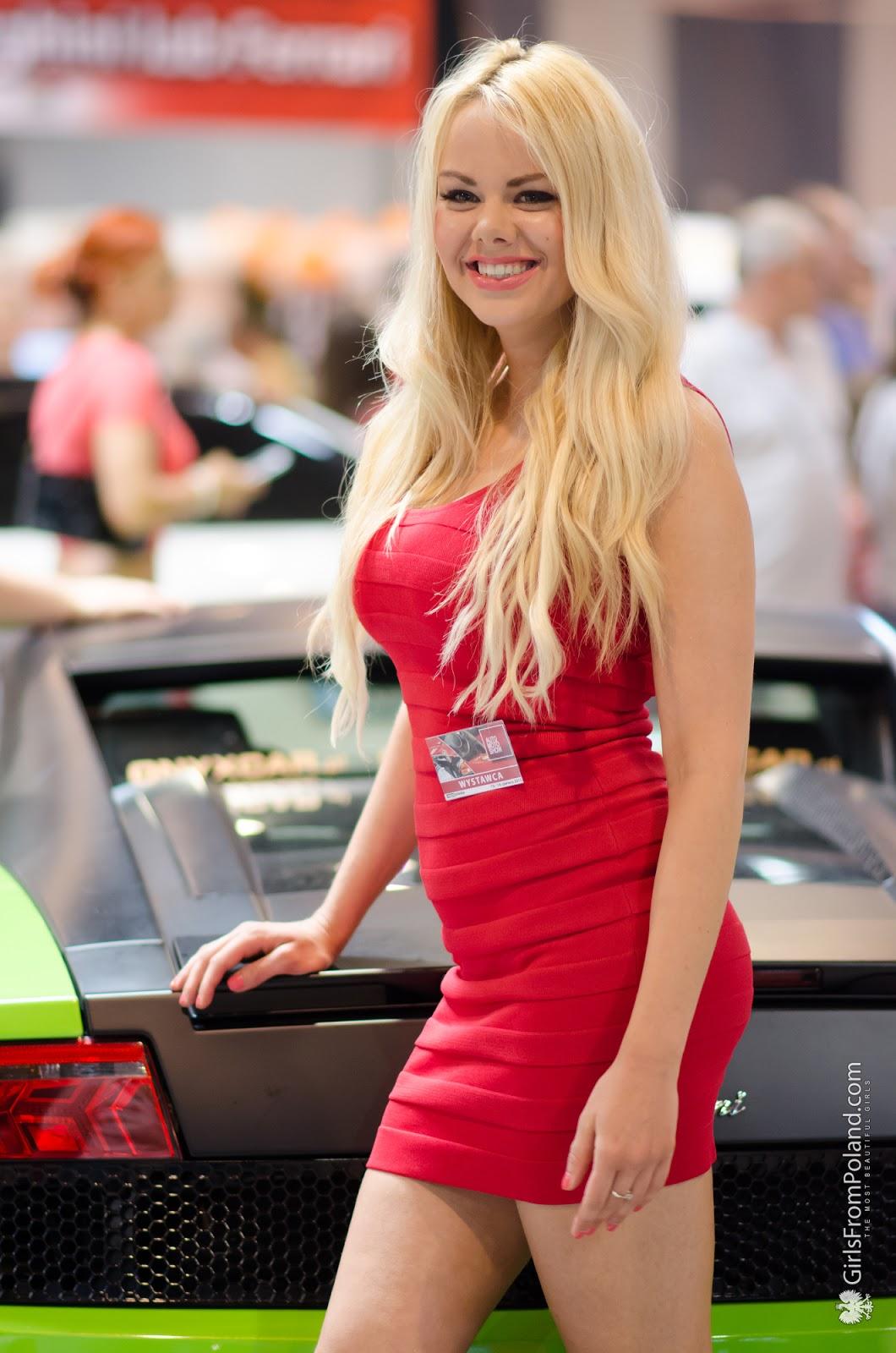 AUTO MOTO SHOW Katowice 2015  Zdjęcie 31