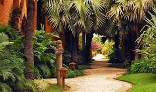Bagan Hotels
