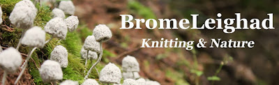Bromeleighad: Knitting and Nature