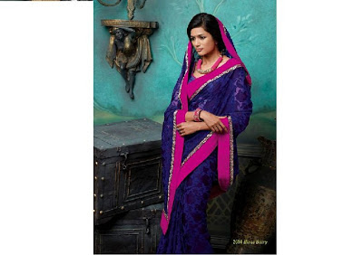 Embroidered Chiffon Saree 2013 2014 For Women Latest New