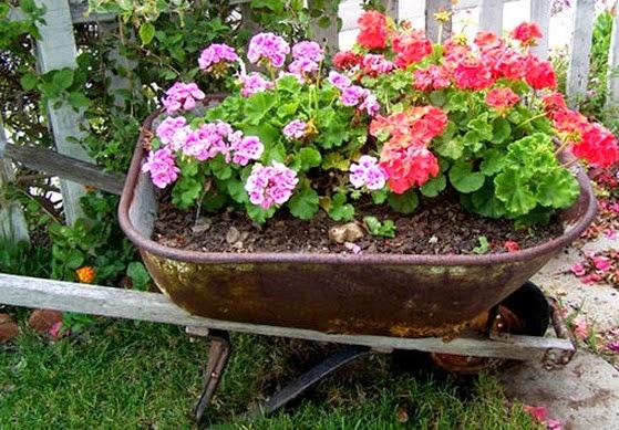 Pot Bunga Cantik dari Gerobak/ Kereta Sorong
