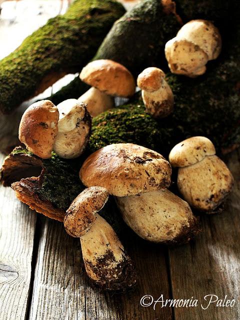 Funghi Porcini Trifolati di Armonia Paleo