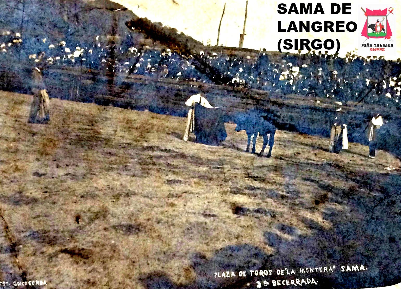 SAMA DE LANGREO TOROS