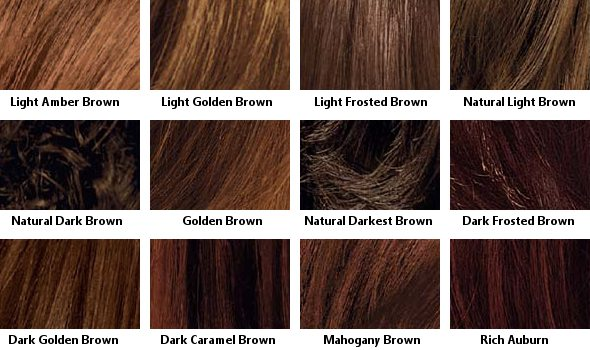 Brown Hair Color Chart  Coloring Hair And Hair Highlighting Will Be More Typ