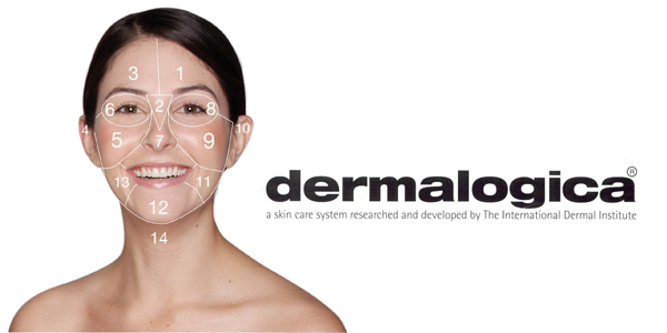 Review: Dermalogica Face Mapping | The Beauty Informer on