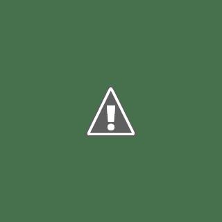 Permohonan pengampunan diraja untuk Anwar Ibrahim tidak kesampaian