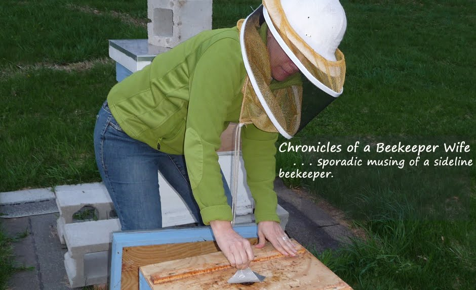 Chronicles of a Beekeeper Wife