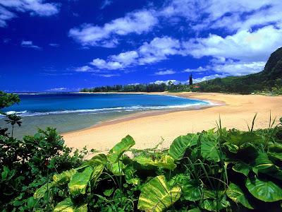 Most beautiful  HD beach wallpaper