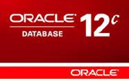 Oracle Database common error codes