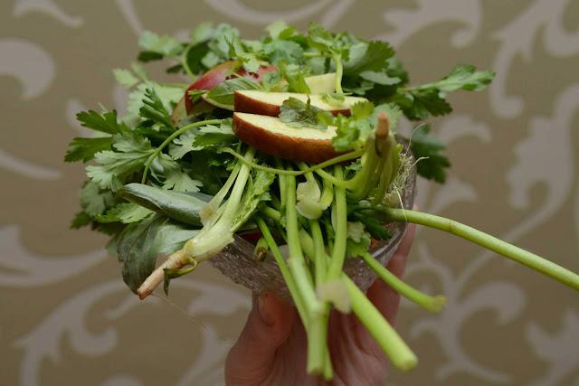 cavy diet/ guinea pig diet