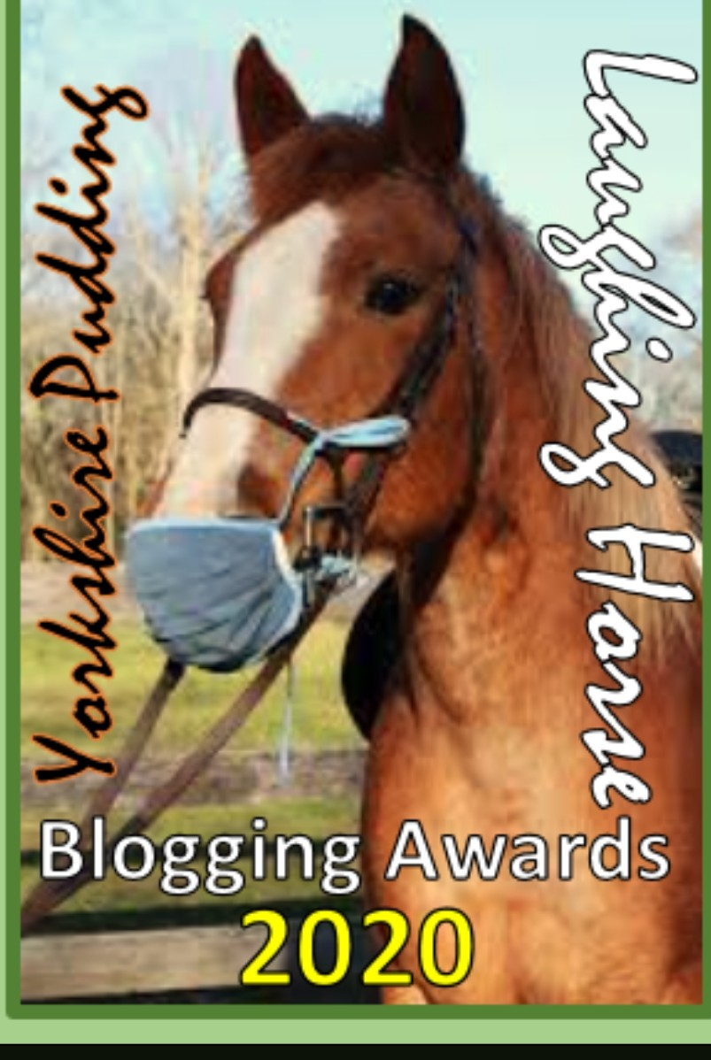 Irish Blogger Of The Year 2020