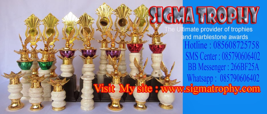 Sigma Trophy Workshop Blog