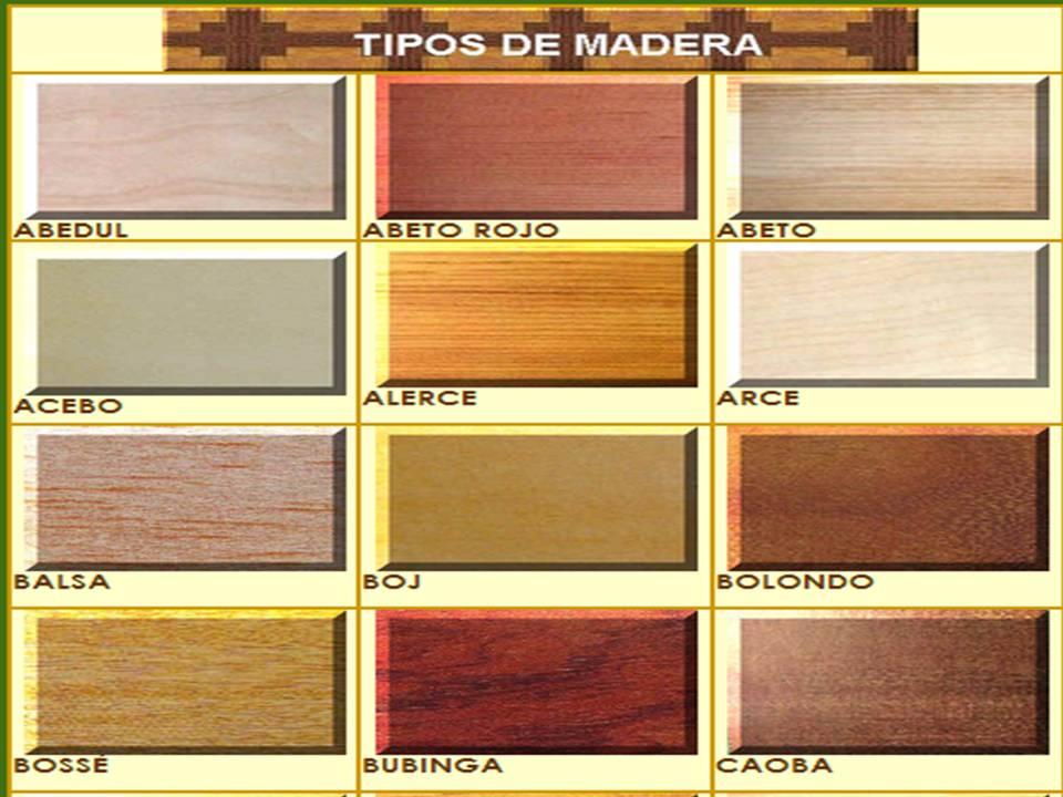 Curiosidades de la madera tipos de madera for La beta de la madera