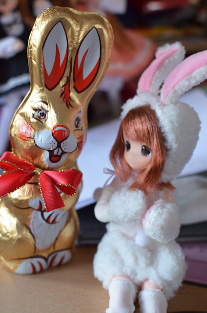 easter chocalete bunny and moko-chan bunny