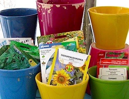 Ajankohtaista nyt: aloita hyötykasvien taimikasvatus oikeaan aikaan!
