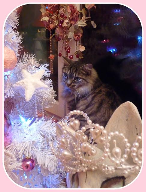 My Shabby French Life Sapin Shabby Avec Chat