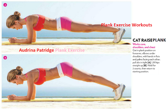 Cat Plank Exercise