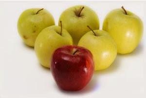 Makanan Penurun Berat Badan dengan Cepat
