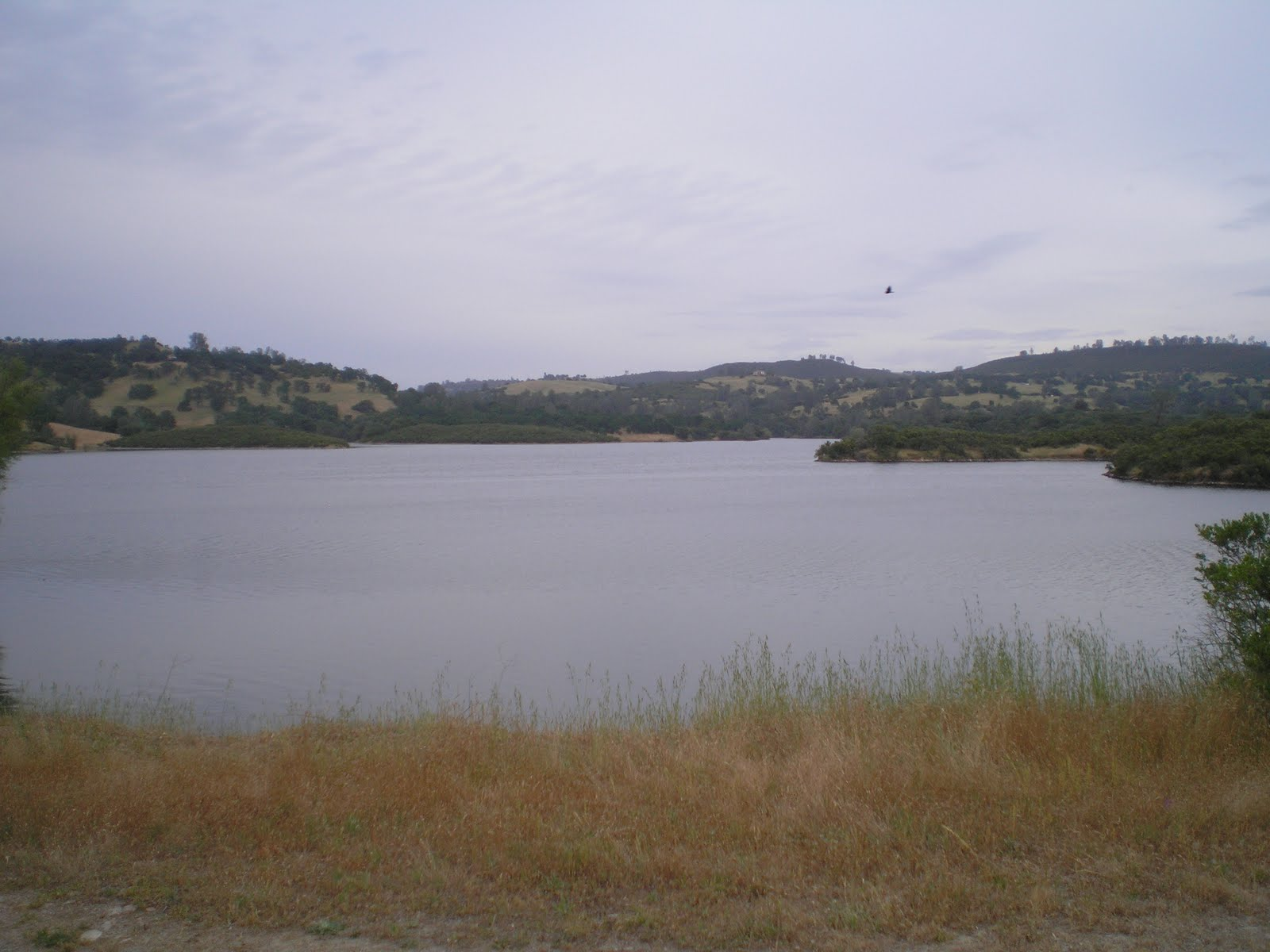 The road genealogist stockton to lake amador a graduation for Lake amador fishing