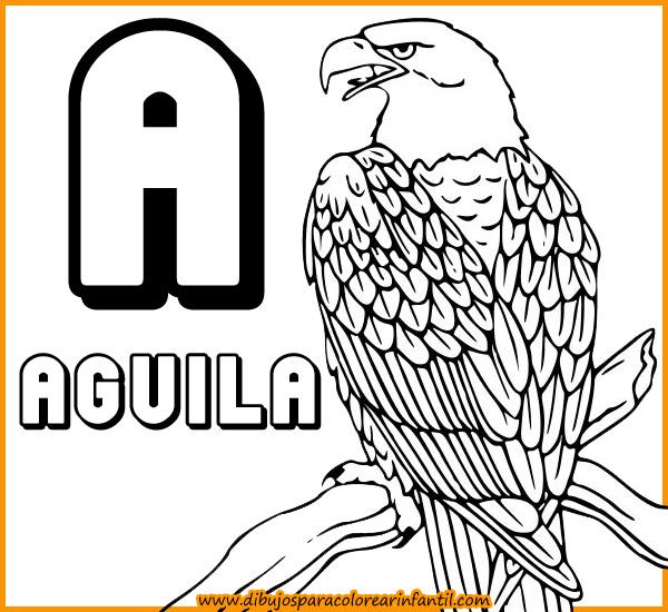 Imagenes de animales con la letra a - Imagui