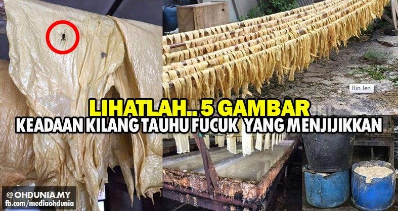 Lihatlah.. Kilang pembuatan Fucuk tauhu yang menjijikkan (5 Gambar)
