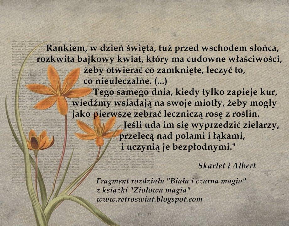 """Z """"Ziołowej magii"""" o dniu, w którym dobro walczy ze złem, a zioła mają największą moc"""