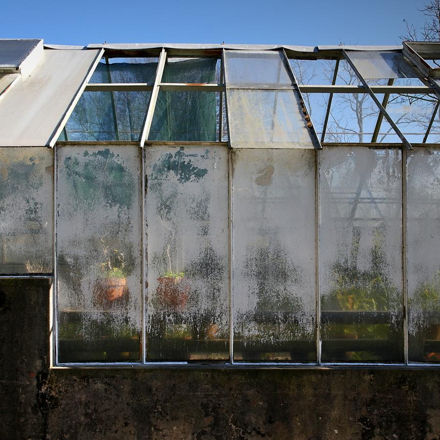 Grande plano das vidraças das estufas já muito degradadas e do reboco da parede em muito mau estado
