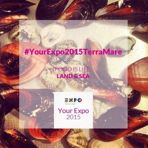 http://expo2015.como.polimi.it/YourExpo2015/EXPO2015terramare/home