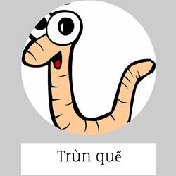 https://sites.google.com/site/hinhanhtqcc/trun-que