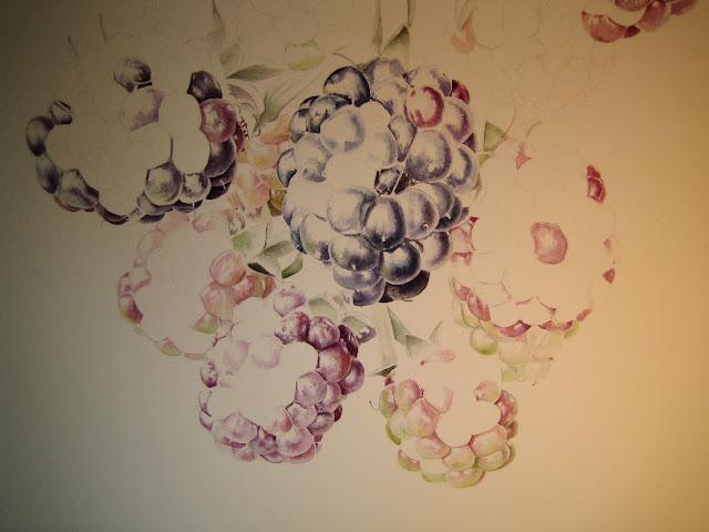 Rubus ulmifolius fruit ripening