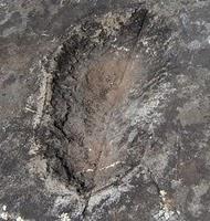 pisadadeldiablo - El monasterio del  Escorial, las puertas del infierno