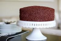 Ant House Cake