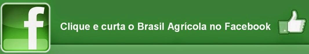 http://www.facebook.com/BrasilAgricola