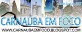 CARNAUBA EM FOCO BLOG