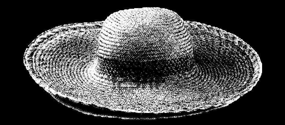 El Sombrero de Modesto