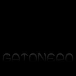 gatonero
