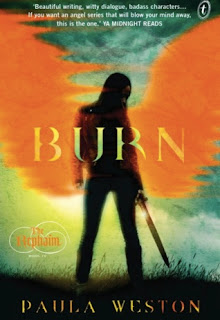 https://www.goodreads.com/book/show/25351256-burn