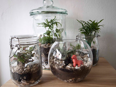 too many a few diy plant terrarium. Black Bedroom Furniture Sets. Home Design Ideas