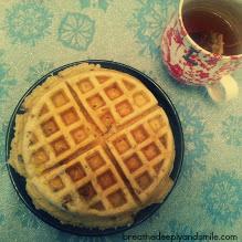 snow-belgian-waffle1