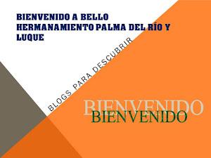 CONOCE PALMA DEL RÍO Y LUQUE