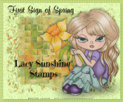 Lacy Sunshine Stamps is the official and only authorised shop to sell Heather Valentin stamps